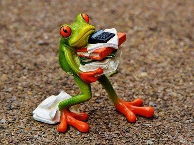 Webp.net-resizeimage (1).jpg Frog new